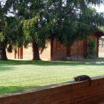Giardino Le Mandragole sul retro